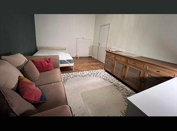 Appartager BE - Chambre à Louer dans un grand appartement - Ixelles-Elsene, Bruxelles-Brussel - 410 € / Mois