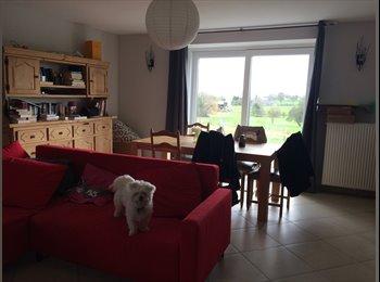 Appartager BE - Colocation 1er mars - Assesse, Namur-Namen - 350 € / Mois