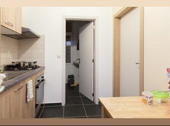 Appartager BE - Des chambres abordables dans un appartement de 3 chambres - le Pentagone (centre ville), Bruxelles-Brussel - 445 € / Mois