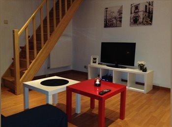 Appartement 2 chambres en colocation.