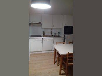Appartager BE - Duplex  - Saint Gilles Sint Gillis, Bruxelles-Brussel - 550 € / Mois