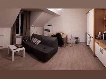 Appartement 1 ch meublé avec jardin