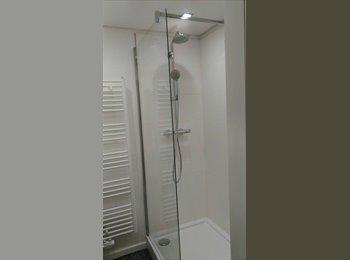 Appartager BE - Penthouse Meiser - Chambre avec douche, Schaerbeek - 450 € / Mois