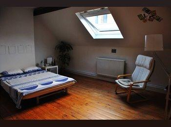 Appartager BE - Large room in a spacious maison de maitre near metro Louise, Ixelles , Ixelles - 654 € / Mois