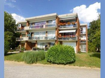 Appartager BE - URGENT: GRANDE chambre dans GRAND appart a Namur (Erpent), Namur - 400 € / Mois