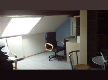 Collocation pour étudiant-e-s- Appartement de 80m2