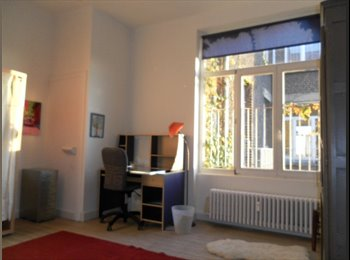 Appartager BE - weekly rent in a beautiful room outside week end, Ixelles - 600 € / Mois