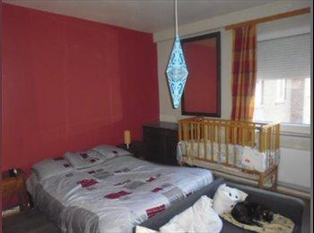 Chambre à louer en plein coeur de Charleroi à un prix...