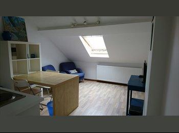 Studio Meublé 25m² + coin chambre Wavre - LLN