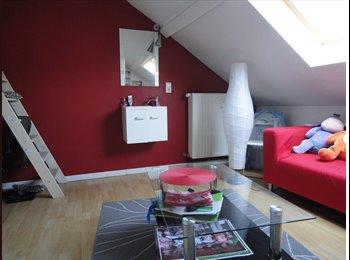 Appartager BE - chambre type studio (=salon + lit double en mezzanine), Namur - 315 € / Mois