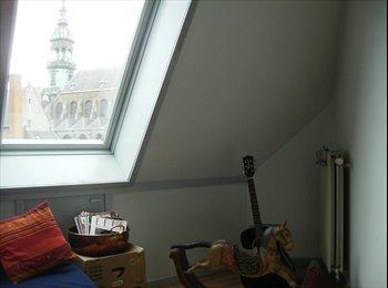 Chambre en plein coeur de Mons