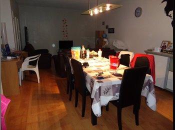 Appartager BE - Grande chambre à Schaerbeek - limite Evere et Woluwe, Evere - 455 € / Mois
