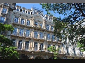 Appartement 200 m² centre ville