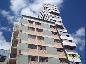 EasyQuarto BR - Centro de Londrina - 1 Quarto, Londrina - R$ 550 Por mês