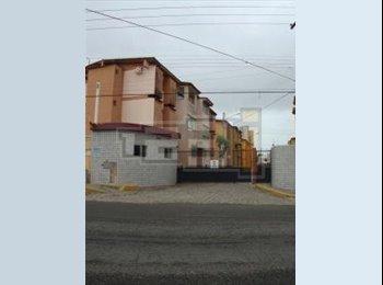 EasyQuarto BR - Dividir Apartamento em Capim Macio - Natal, Natal e Grande Natal - R$ 300 Por mês