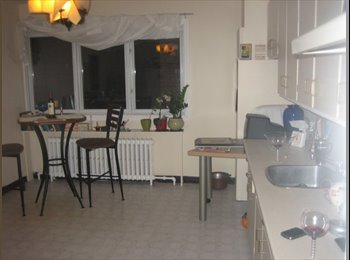 Room available in nice apartment