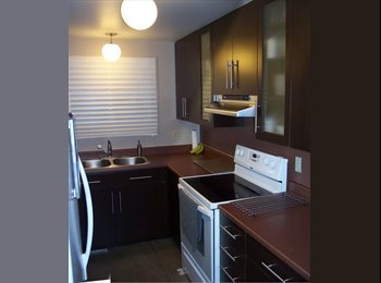 2 rooms to rent in a house with other Ottawa U students.