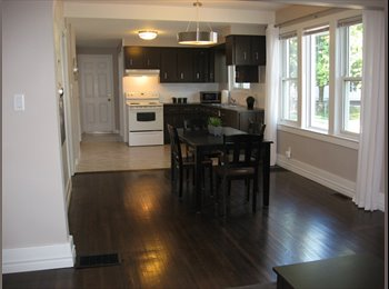 EasyRoommate CA - BEAUTIFUL DECORATED FURNISHED APARTMENT - Windsor, South West Ontario - $390 pcm