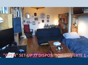 EasyRoommate CA - Salon Double FANTASTIK Double Room - ds/in  6 1/2 MileEnd - Le Plateau-Mont-Royal, Montréal - $630 pcm