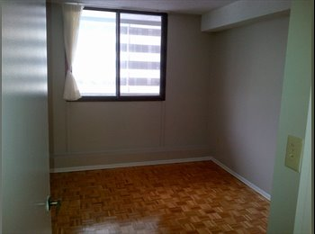 room for rent (yonge and college)