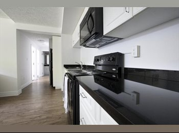 4 Month Summer Sublet (May-Aug)