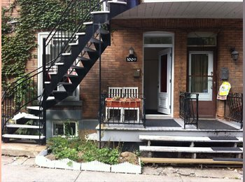 EasyRoommate CA - awesome roommate need it - Centre Ville, Montréal - $500 pcm