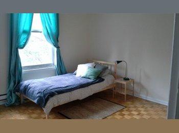 EasyRoommate CA - Chambre meublée à louer! - Le Plateau-Mont-Royal, Montréal - $650 pcm