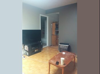 Young professional Woman Looking for Roommate