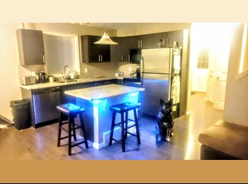 South Edmonton Room for Rent (Ellerslie and 50th St)
