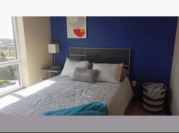 EasyRoommate CA - ROMM RENTAL ON 181 LESTER AVE  WATERLOO 4 MONTHS /8MONTHS - Waterloo, South West Ontario - $725 pcm