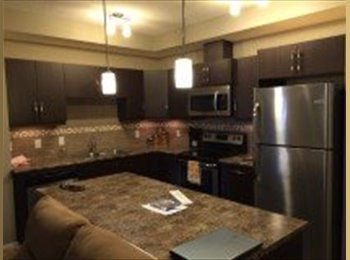 EasyRoommate CA - LUXURY APARTMENT EAST OF DOWNTOWN - Central, Edmonton - $750 pcm