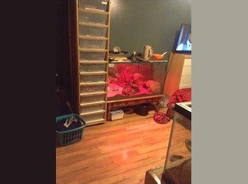 Northgate master bedroom for rent