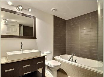EasyRoommate CA - Looking for a new Roommate (Room in a furnished condo) - Villeray - Saint-Michel - Parc-Extension, Montréal - $600 pcm
