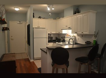 King West Roommate Wanted
