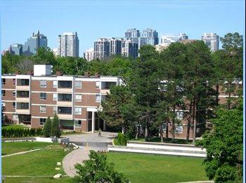 EasyRoommate CA - room to rent - Yonge & Sheppard, Toronto - $550 pcm
