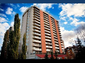 EasyRoommate CA - Male to share downtown condo - Central, Edmonton - $800 pcm