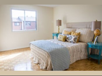 EasyRoommate CA - One Bedroom Near Algonquin - Western Suburbs, Ottawa - $433 pcm