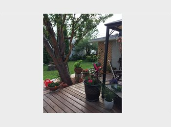 EasyRoommate CA - Looking for a Working  Professional Male , Edmonton - $600 pcm