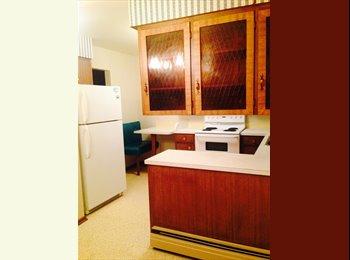 Spacious apartment for rent in Erlton/inner-city