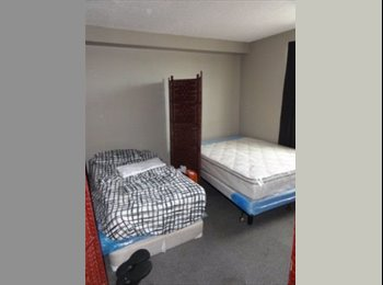 $25 a Night. 175 a Week.  425 a Month For a Bed in Shared...