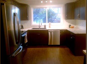 Freshly Renovated Main Level Home
