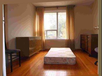 EasyRoommate CA - Large room, $500, December 1, Birchmount/401 - East Toronto, Toronto - $500 pcm