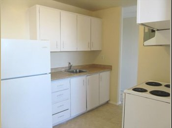 EasyRoommate CA - Female Roommate Wanted, Semi-Furnished Room, Price Negotiable!! Details in the ad! - Kitchener, South West Ontario - $440 pcm