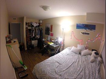 EasyRoommate CA - SUMMER SUBLET (1-3 rooms) - Waterloo, South West Ontario - $570 pcm