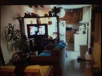 EasyRoommate CA - Grande chambre meublée à 3 min. du métro Mont-Royal - Le Plateau-Mont-Royal, Montréal - $530 pcm