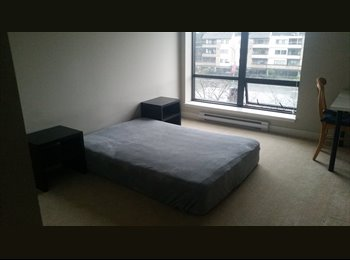 Spacious room in Richmond highrise