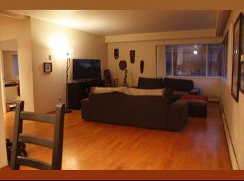 EasyRoommate CA - WestEnd Apartment Seeks Roommate, Vancouver - $1,350 pcm