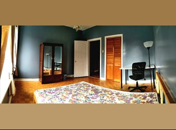 Newly furnished rooms in Little Italy, All-inclusive