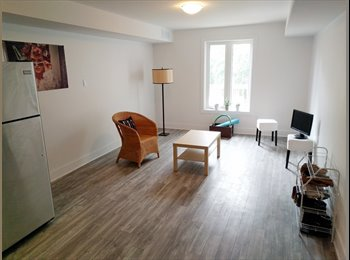 Room in gorgeous luxury apartment in the Glebe