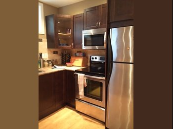 EasyRoommate CA - Beautiful and bright basement suite near the U of A, Edmonton - $688 pcm